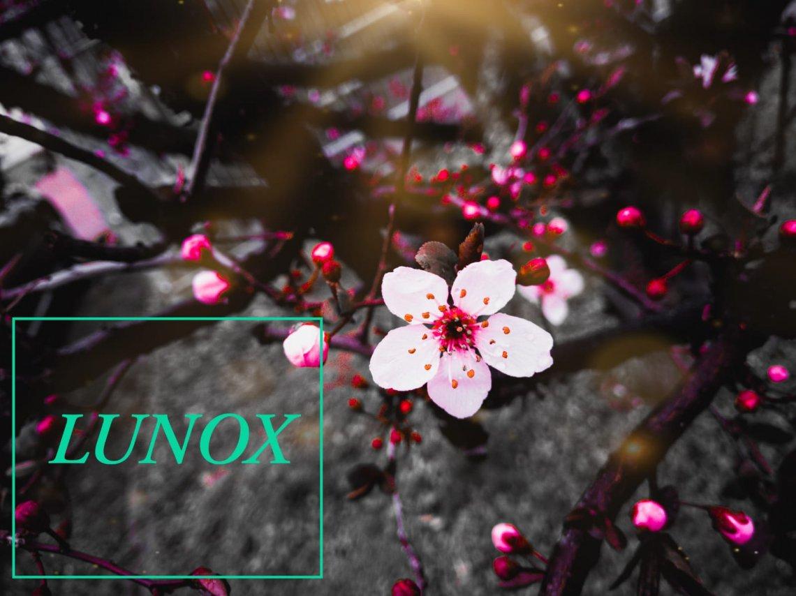 LuNox
