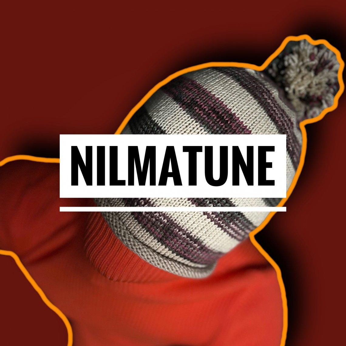 33 - NILMATune